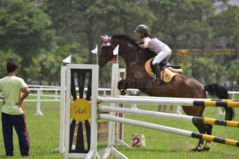 Jogos 2015 equestres de Taiwan (saltar) fotos de stock royalty free