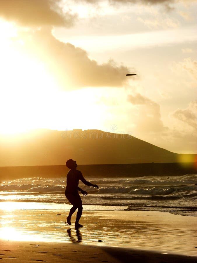 Jogue o frisbee fotografia de stock royalty free