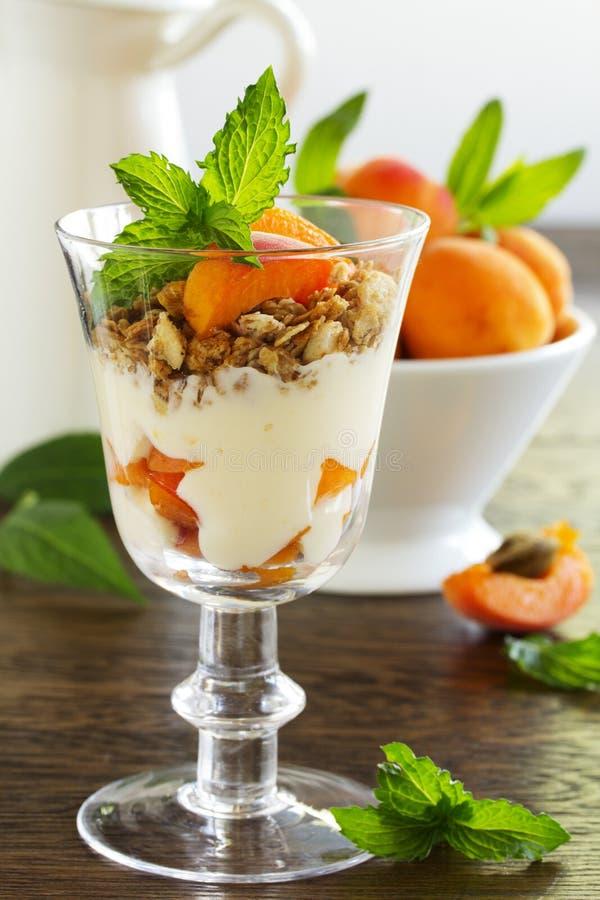 Jogurt mit Granola und Aprikosen, stockbilder