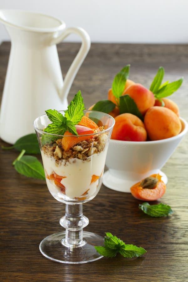 Jogurt mit Granola und Aprikosen, stockbild