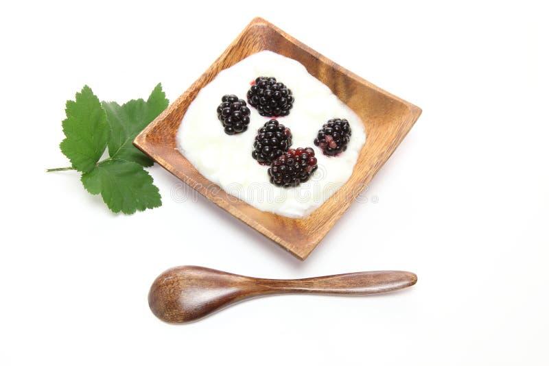 Jogurt z czernicą obraz stock