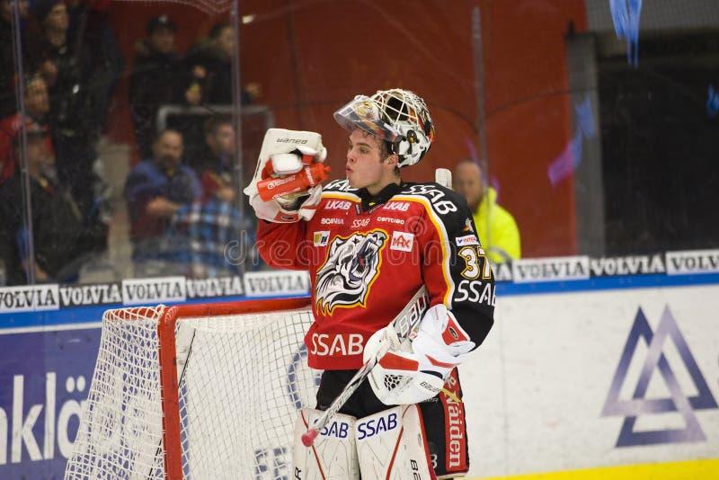 is johan för goaliegustafssonhockey arkivbilder