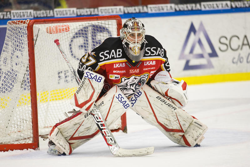 is johan för goaliegustafssonhockey royaltyfria foton
