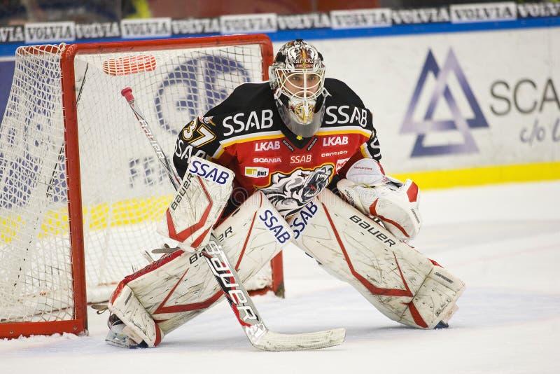 Johan Gustafsson - Goalie do hóquei do gelo fotos de stock royalty free