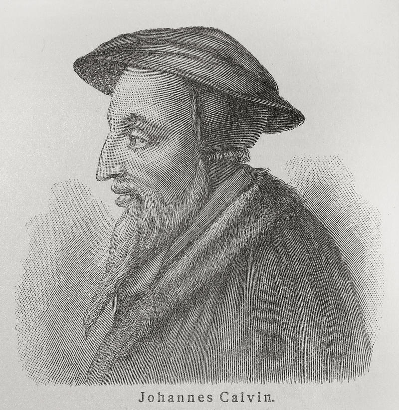 Free John Calvin Royalty Free Stock Photography - 20383497