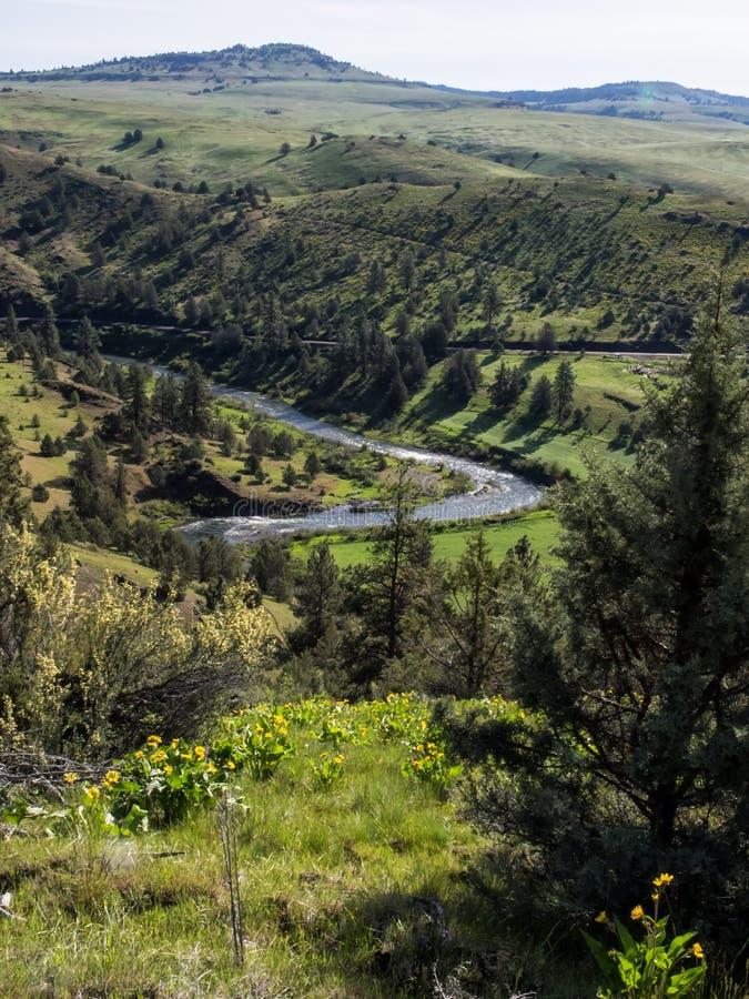 John Day River met de lentebloemen royalty-vrije stock foto