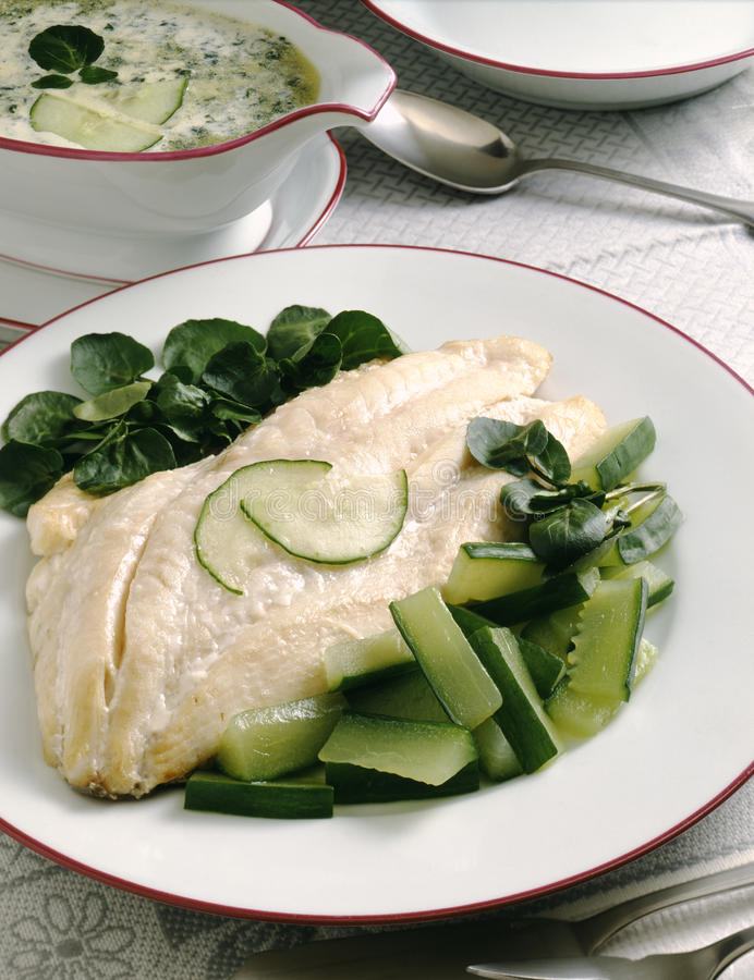 Download John Dory With Cucumber And Watercress Stock Image - Image of stone, spring: 23702599