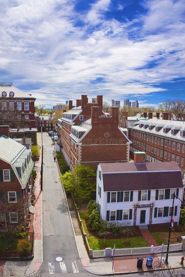 John Kennedy Street dans la région d'Université d'Harvard à Cambridge photos libres de droits
