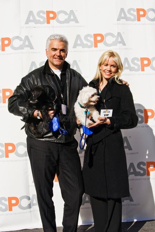 John O'Hurly for ASPCA royalty free stock photo