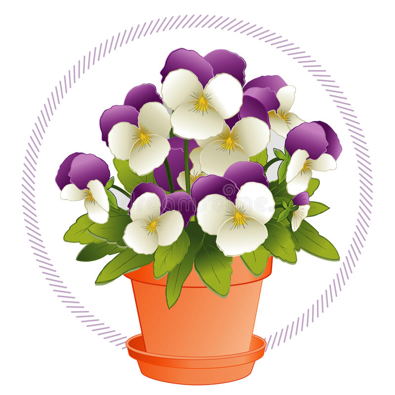 Download Johnny Jump Ups In A Flowerpot Royalty Free Stock Image - Image: 9726126