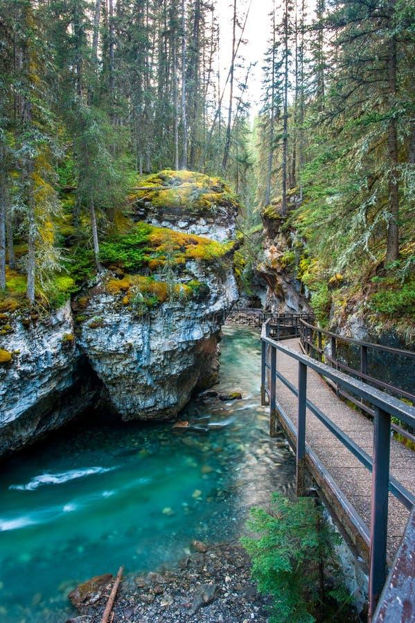 Johnston canyon. Banff national park, Canada stock photos
