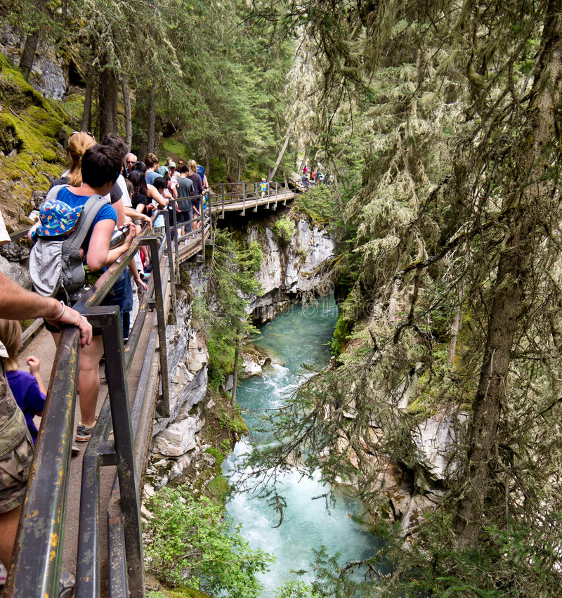 Johnston Canyon, Banff. National Park with tourist on boardwalk along river royalty free stock photography