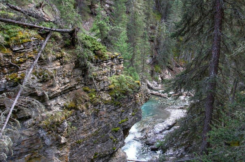 Johnston Canyon. S nature at Banff National Park stock images