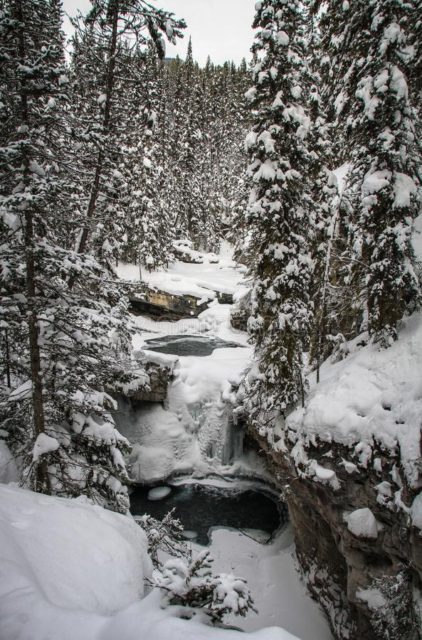 Johnston Canyon am eisigen und schneebedeckten Tag, Bogenfluß, Alberta Kanada stockbild