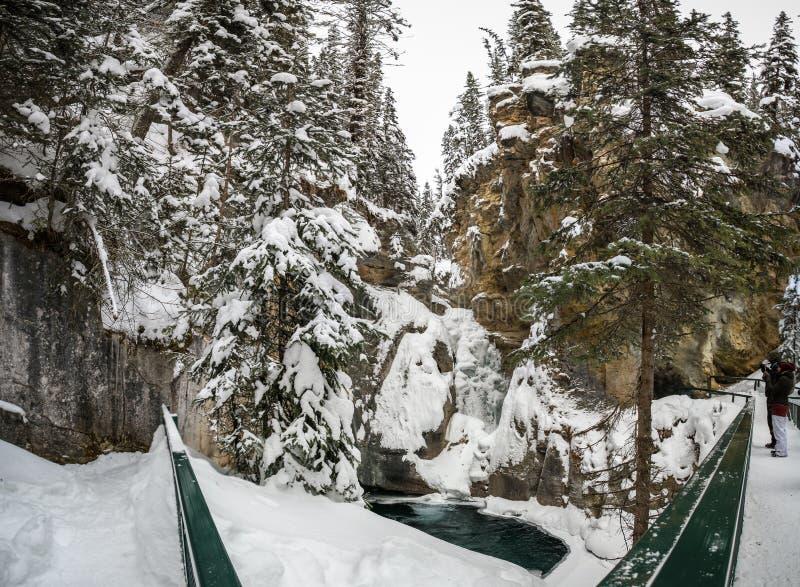 Johnston Canyon Lower fällt während eines eisigen und schneebedeckten Tages, Bogenfluß, Alberta Kanada stockfoto