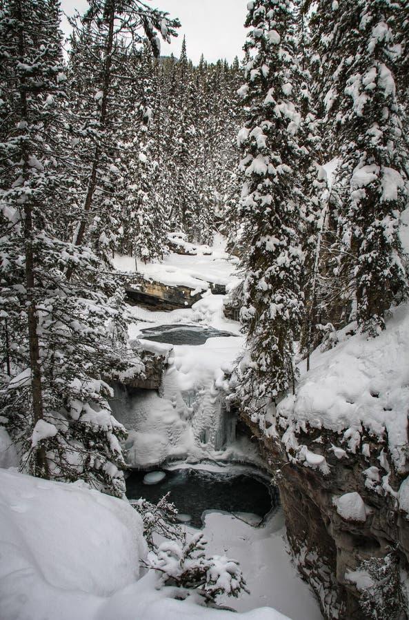 Johnston Canyon op ijzige en sneeuwdag, boogrivier, Alberta Canada stock afbeelding