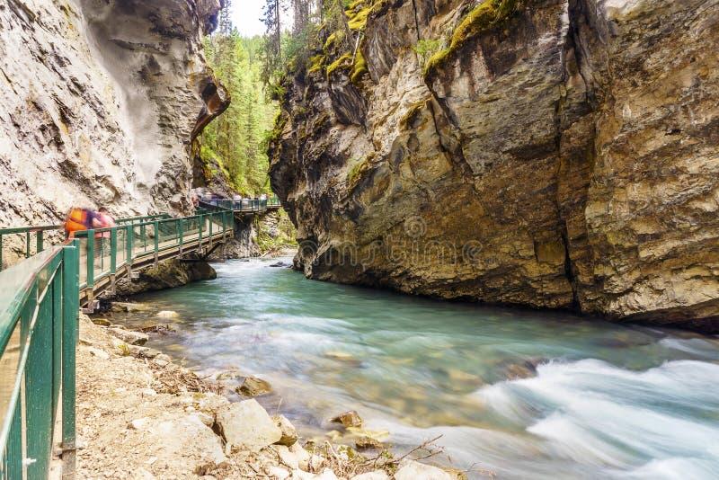 Johnston Canyon-sleep in het Nationale Park van Banff, Alberta, Canada stock fotografie