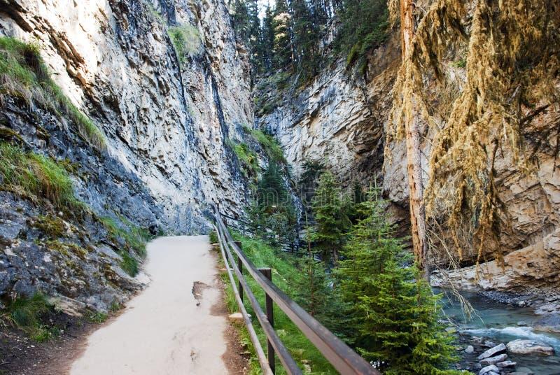 Johnston Canyon Walkway. Walkway at the Falls in Johnston Canyon Banff National Park Alberta Canada stock images
