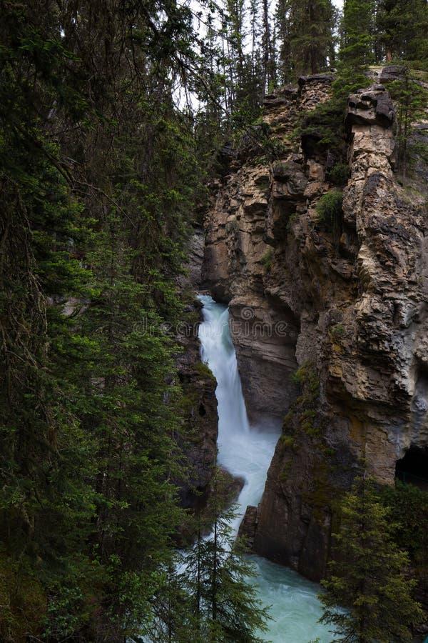 Johnston Canyon. And waterfalls, Alberta, Canada royalty free stock photography