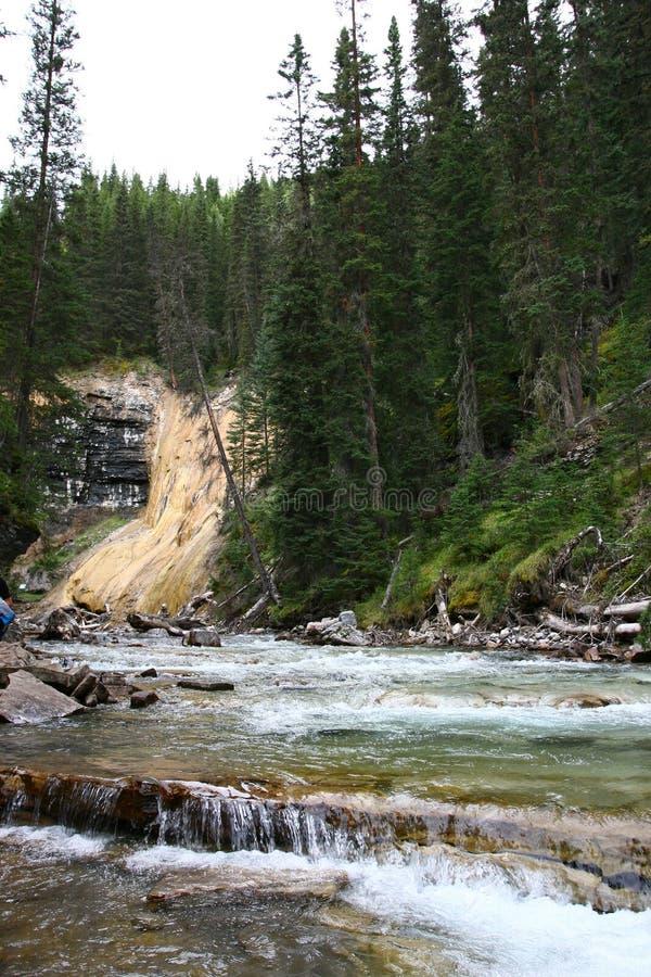 Johnston Canyon Waterfalls. Waterfalls at Johnston Canyons at Banff National Park stock photography
