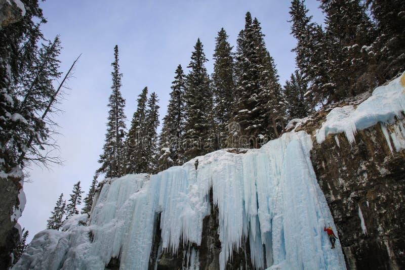 Johnston Canyons obere Fälle mit Eisbergsteigern, Bogenfluß, Alberta Kanada lizenzfreies stockbild