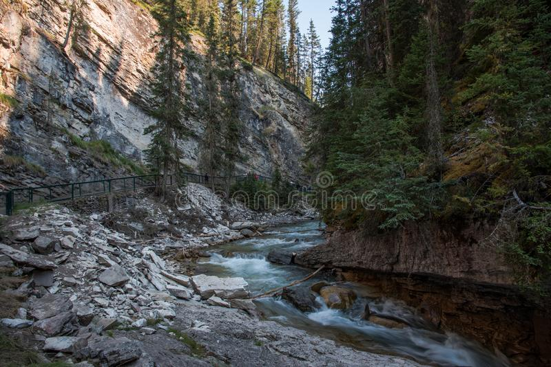 Johnston kanjon i den Banff nationalparken - Kanada fotografering för bildbyråer