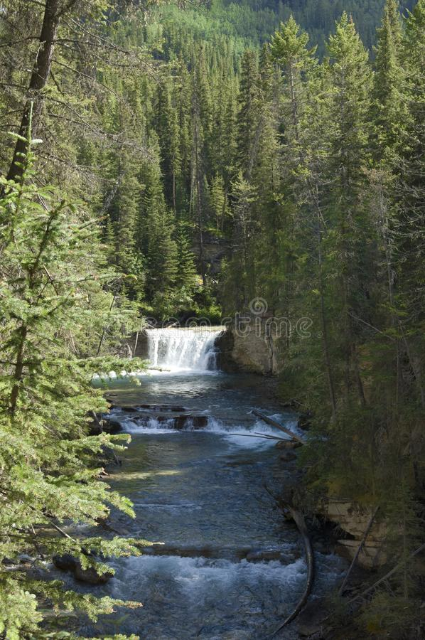 Johnston-Schlucht, Kanada stockfotos