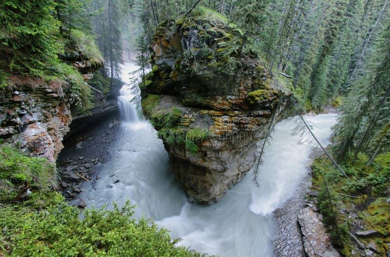 Johnston-Schlucht, Nationalpark Banffs stockfotos