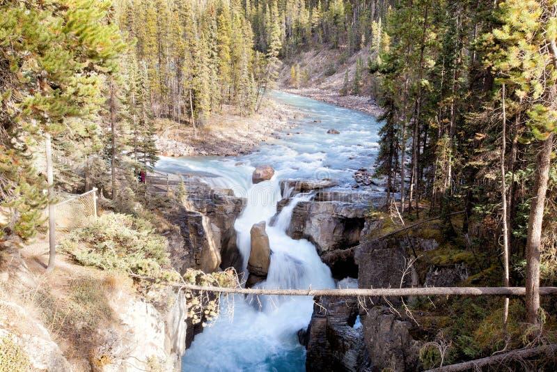 Johnston-Schlucht-Wasserfall im Banff-Nationalpark stockfotos