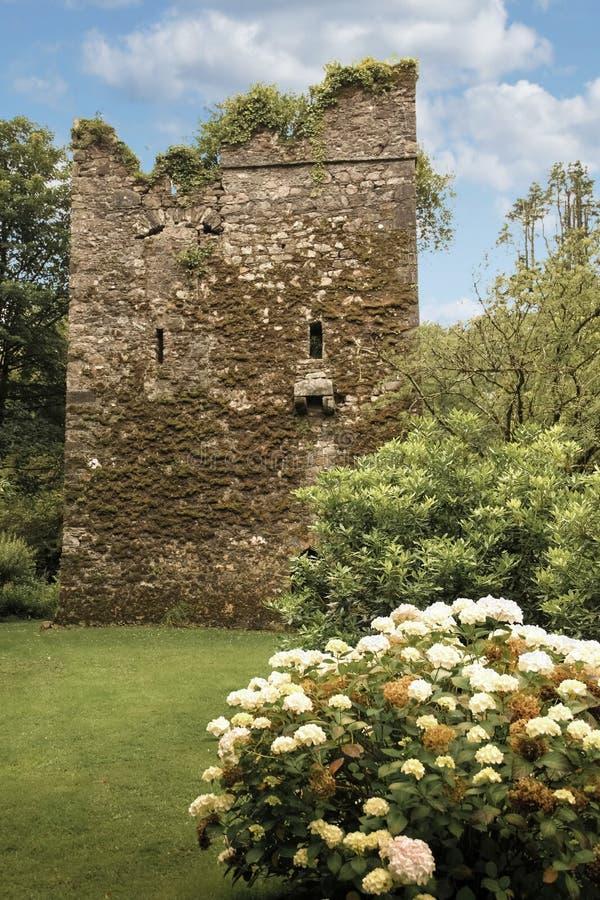Johnstown slott ståndsmässiga Wexford ireland royaltyfri fotografi