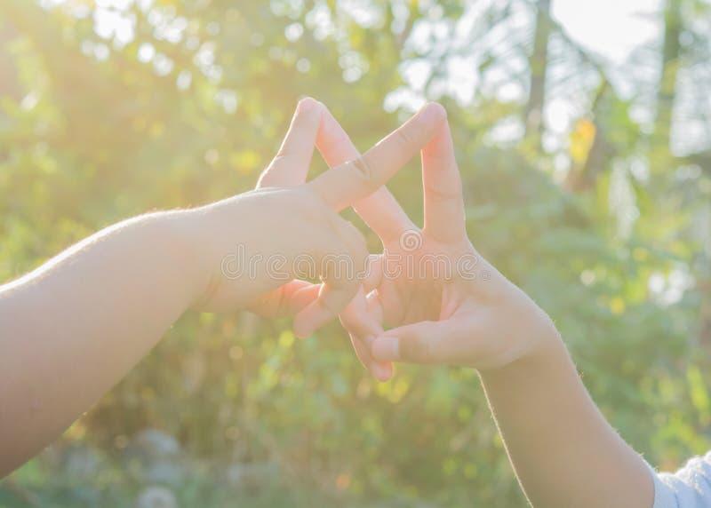 Joignez les mains folâtrant les enfants et la nature locaux image stock