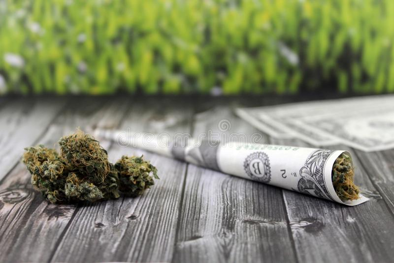 Joint bundled with a dollar bill and lots of buds stock image
