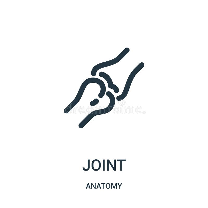 joint icon vector from anatomy collection. Thin line joint outline icon vector illustration. Linear symbol for use on web and stock illustration