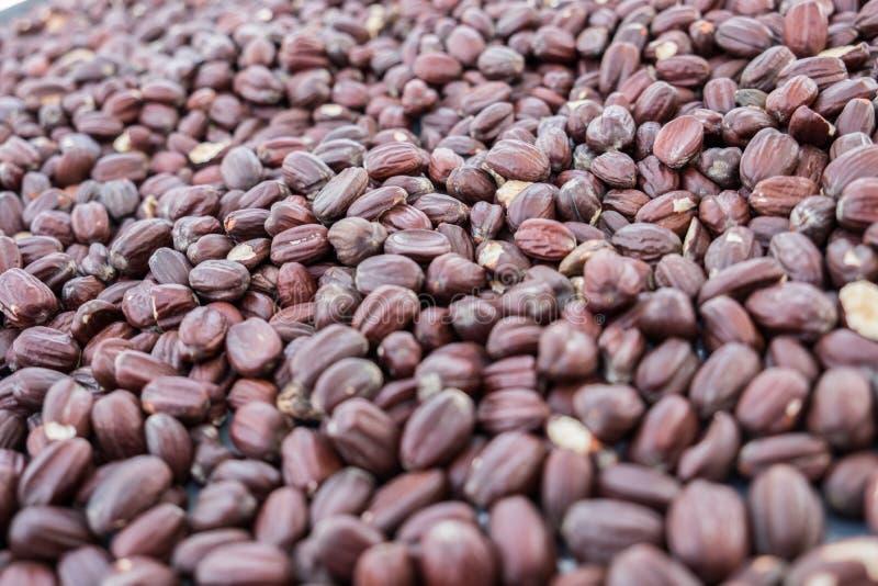 Jojoba beans background. Selective focus royalty free stock images
