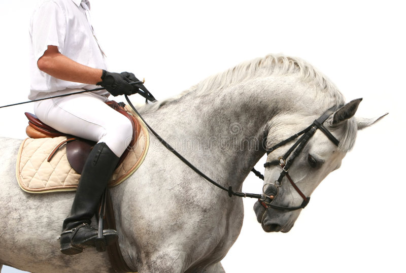 Jokey on dressage horse royalty free stock images