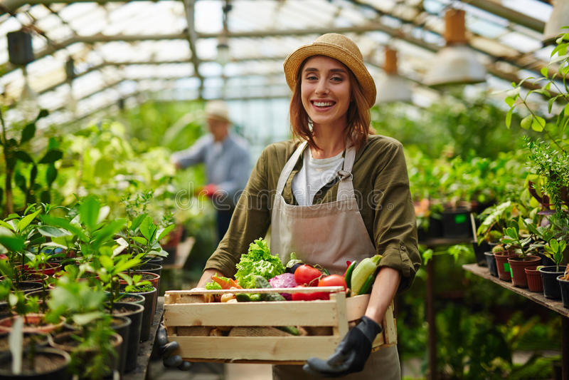 Joli jardinier photos libres de droits