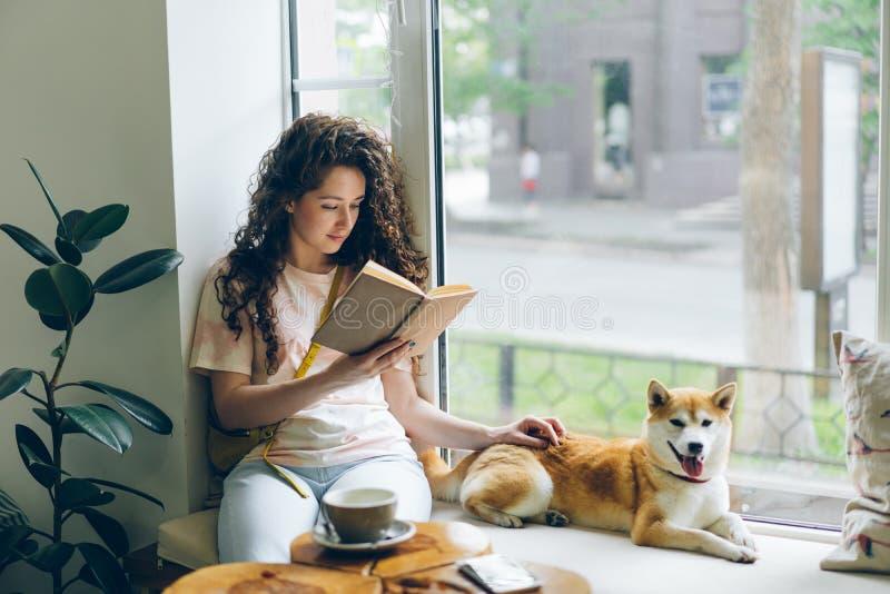 Joli livre de lecture de fille frottant le chien d'inu de shiba détendant sur le filon-couche de fenêtre en café photo stock