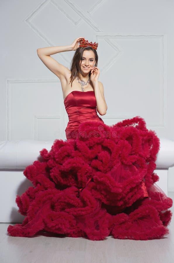 Jolie brune posant en studio photographie stock