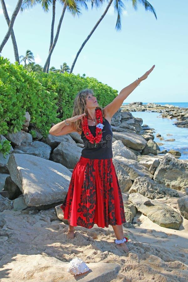 Jolie femme à la plage photos libres de droits