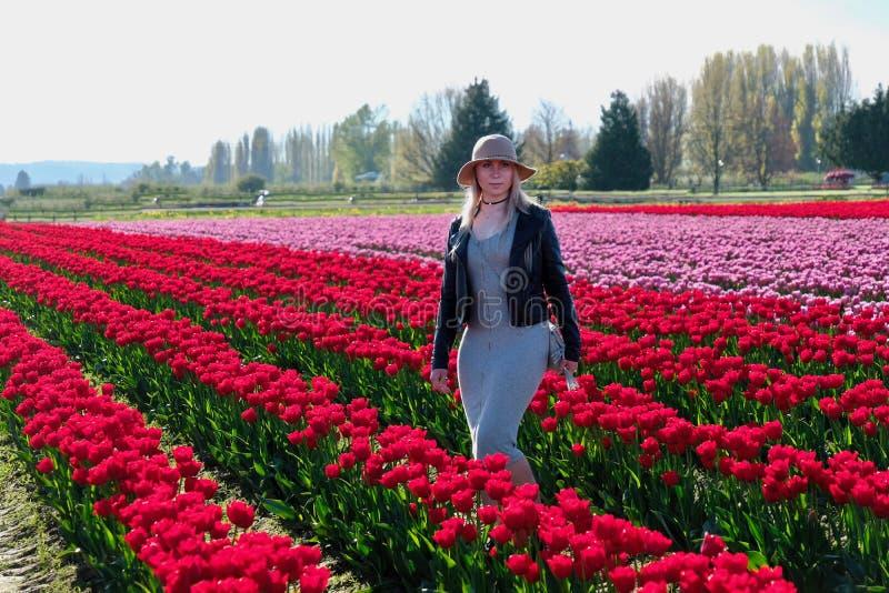 Jolie femme dans des domaines de tulipe image stock