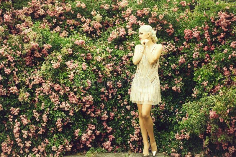 Jolie femme près de rosier photos stock
