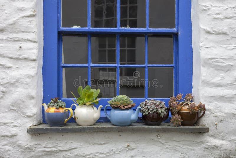 Jolie fenêtre de cottage avec des théières et des usines photos stock
