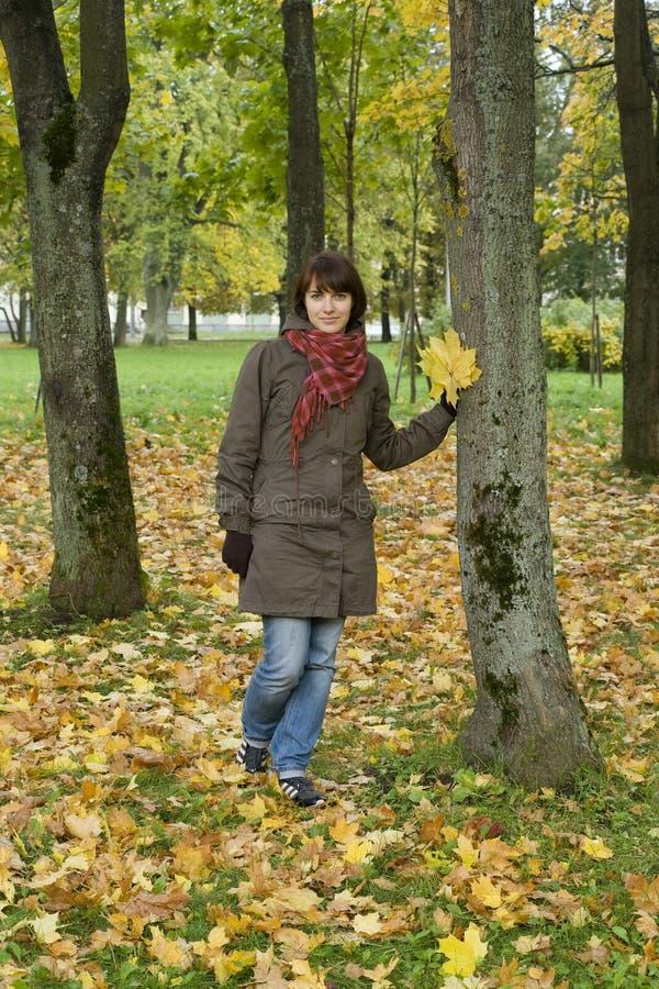 Jolie fille près d'arbre en stationnement d'automne photos stock