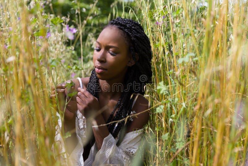 Jolie jeune femme dans la haute herbe photo stock