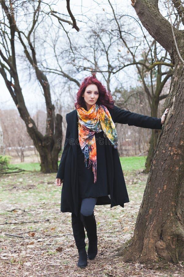 Jolie jeune femme dans le manteau noir et support coloré d'écharpe en parc par le plein hiver de tir de corps d'arbre images stock