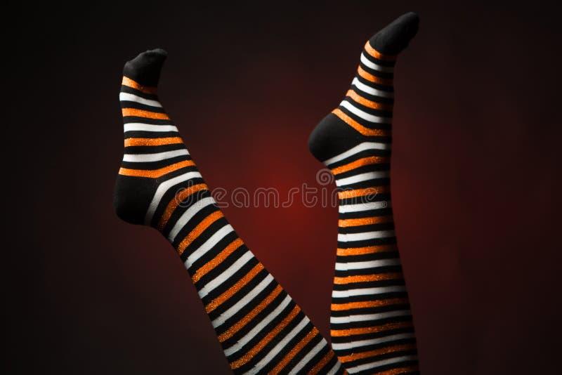 Jolies jambes dans longues chaussettes multicolores photo stock