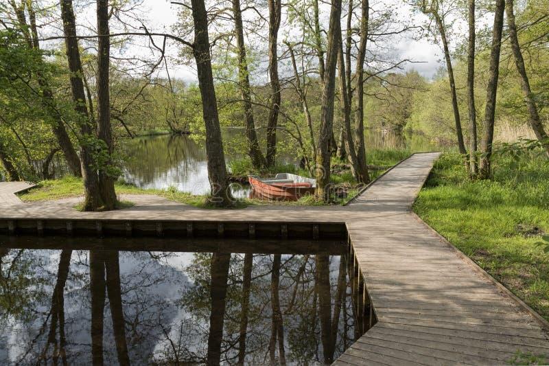 Jolle i floden royaltyfri fotografi