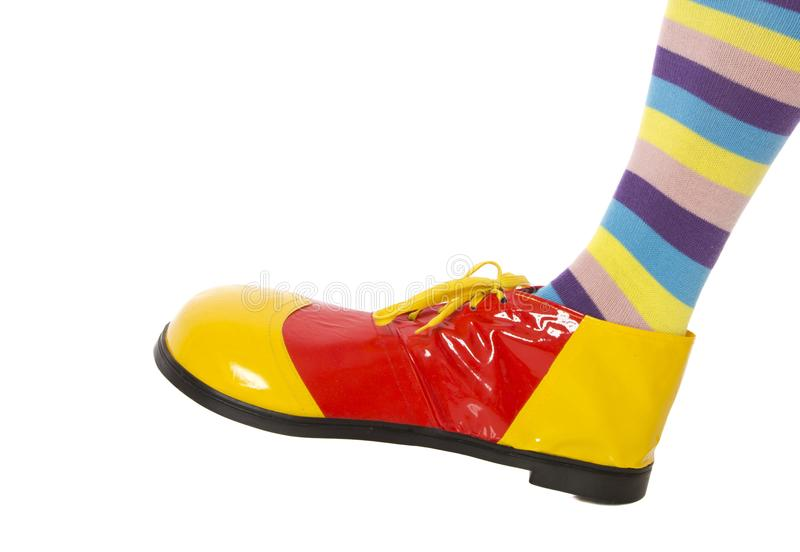 Jolly Colourful Clown Foot imagens de stock