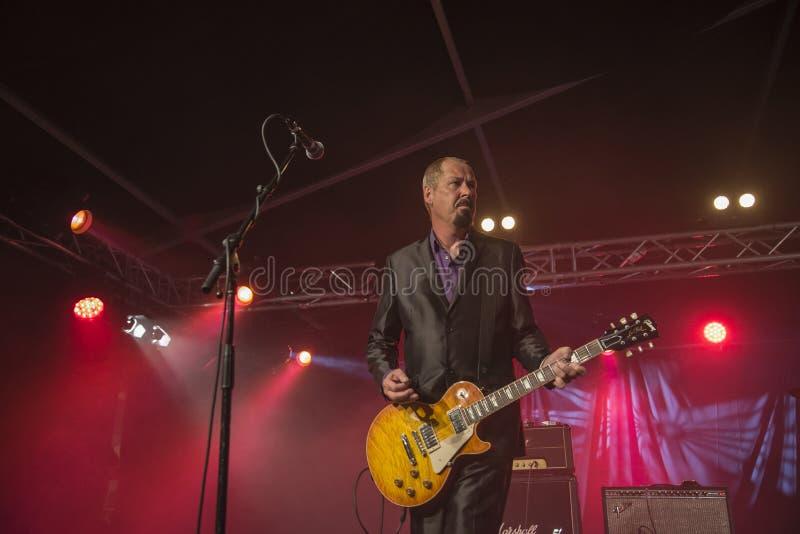 Jon Nichols joue la guitare photo stock