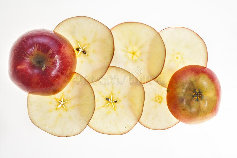 Jonagold-Apfel Malus domestica Scheiben stockfotografie